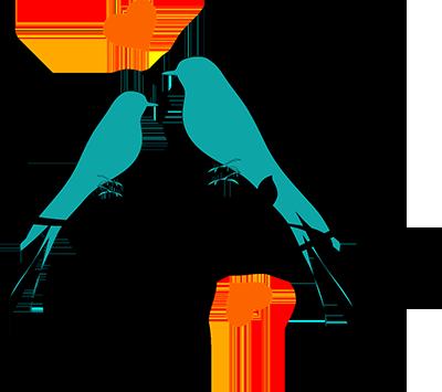 birds-308603_400px